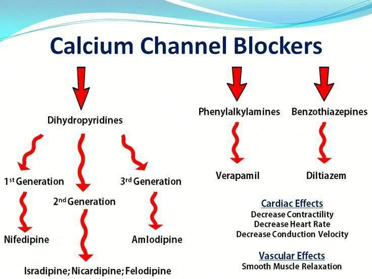 A Brief Details of Calcium Channel Blocker Medicine( CCBs).