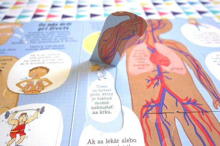 Táto encyklopedická knižka s odklápacími okienkami ťa nechá nazrieť do útrob ľudského tela. Nauč sa niečo nové! Odklop viac ako 100 okienok a zisti, ako spolu všetky časti ľudského tela spolupracujú a ako sú vzájomne prepojené, aby vytvorili jedinečnú bytosť - človeka. #encyklopedia #kniha #ludsketelo