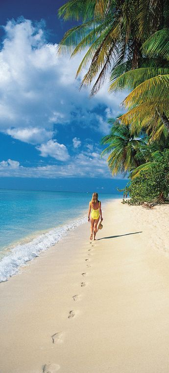 Unwind in the Caribbean with Holland America Line.