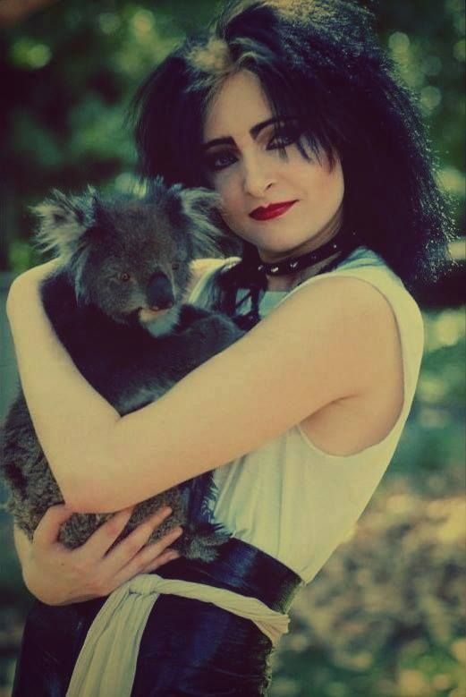 Siouxsie Sioux and a Koala bear. My day has been fulfilled. Good night!