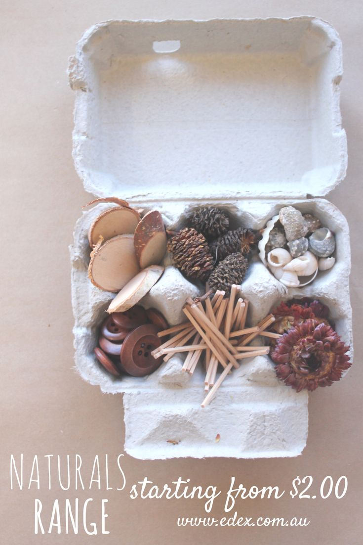 DIY Naturals Range Creative Cartons. Choose from a HUGE range of natural resources to create your own creative carton for the kids to use at home or in the classroom.