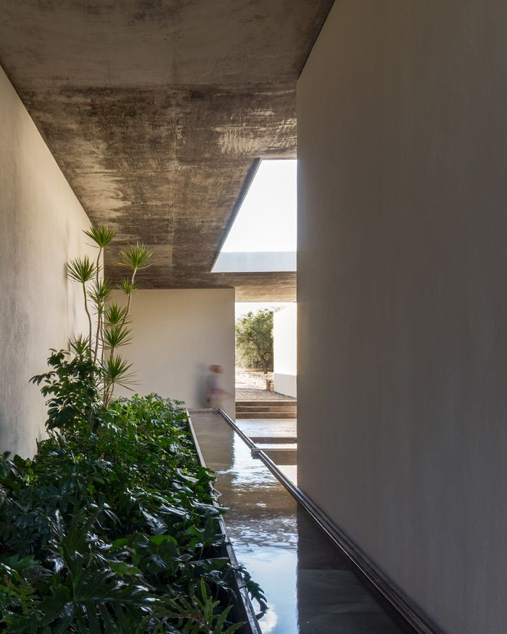 CC Arquitectos links agricultural offices in Mexico with water-filled patios