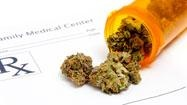 """MMakeMakes (Article) The Government Has Always Known....""""scientists have discovered that THC shrinks tumors. 1974 researchers at the Medical College of Virginia, who had been funded by the National Institute of Health to find evidence that marijuana damages the immune system, found instead that THC slowed the growth of three kinds of cancer in mice - lung and breast cancer, and a virus-induced leukemia. The DEA quickly shut down the Virginia study and all further cannabis/tumor research."""""""