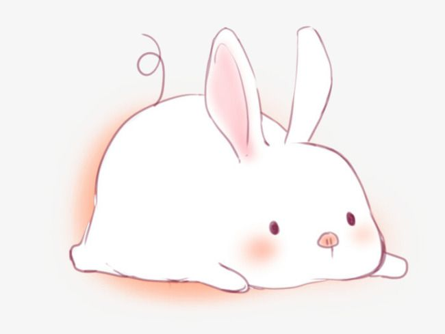 Cute Little Rabbit Rabbit Pictures Rabbit Cartoon Rabbit Cartoon Images