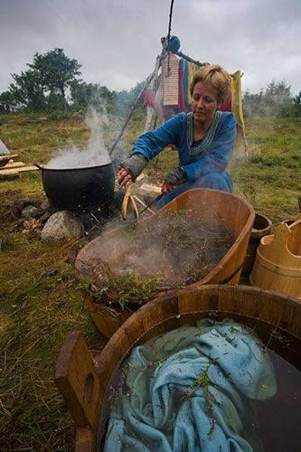 Based on chemical analyses of actual wool textiles, the following plants were more or less certainly used to dye wool textiles of the Viking Age. Colors, Dyestuffs, and Mordants of the Viking Age