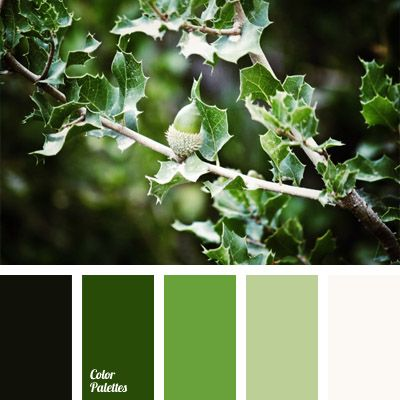 A very calm and soothing color palette, which is suitable for people who love the monochrome combination of green shades..