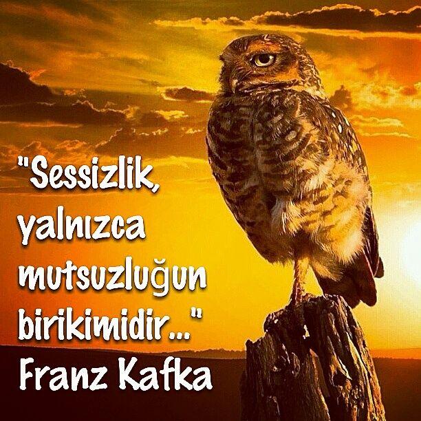 Sessizlik, yalnızca mutsuzluğun birikimidir...Franz Kafka