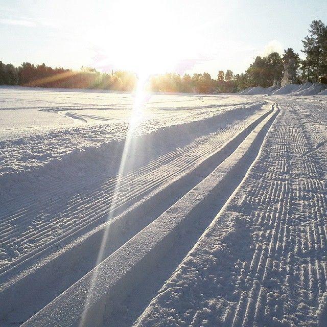 week #9. Great tracks in the middle of the village. #suorssá #sorsele #swedishlapland #västerbotten