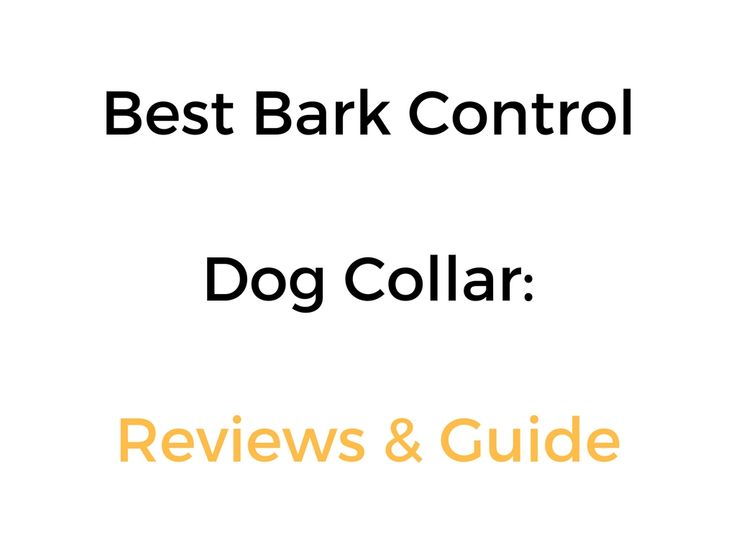 Best Bark Control and No Bark Collars: Reviews & Guide