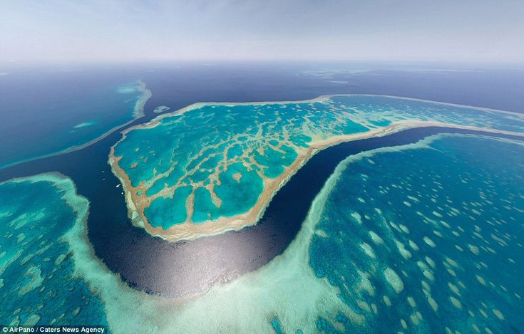 Looking down, down under! Australia's barrier reef looks a brilliant shade of turquoise in...