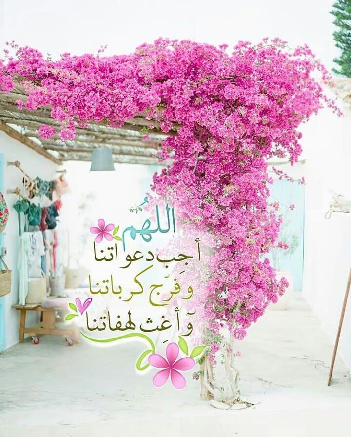 L Image Contient Peut Etre Fleur Plante Et Texte Book Flowers Islamic Prayer Home Decor Decals
