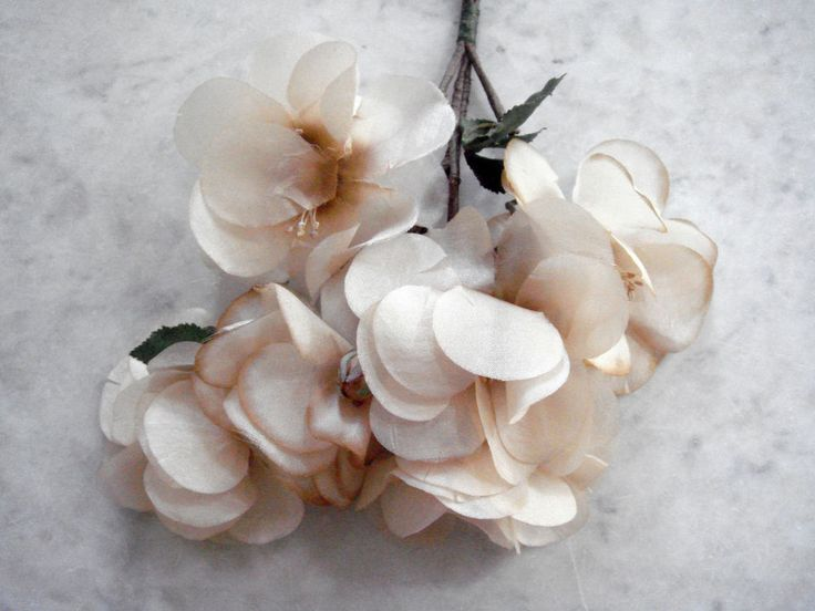 451 best vintage millinery flowers images on pinterest vintage vintage 1950s millinery flowers 6 beige silk flowers small buds green leaves mightylinksfo