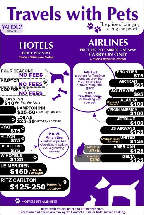 Hotel and airline fees for traveling with your dogs