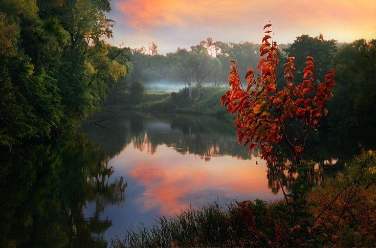 Осенний костер. Автор: Teems