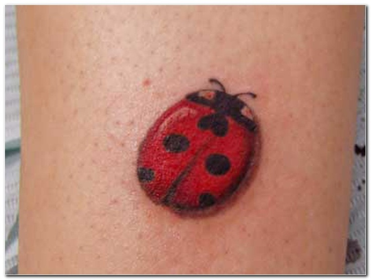 118 best images about ink on pinterest lady bug tattoo for Ladybug heart tattoos