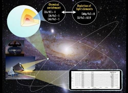 Descubierta una nueva familia de estrellas gigantes rojas con una extraña composición química en la Vía Láctea. Mientras buscaban reliquias fósiles de la Vía Láctea temprana, un equipo científico tropezó con un hallazgo inesperado: una nueva familia de estrellas gigantes con una composición química inusual según los modelos de nucleosíntesis (procesos de fusión nuclear en el interior de las estrellas donde se originan nuevos elementos químicos).