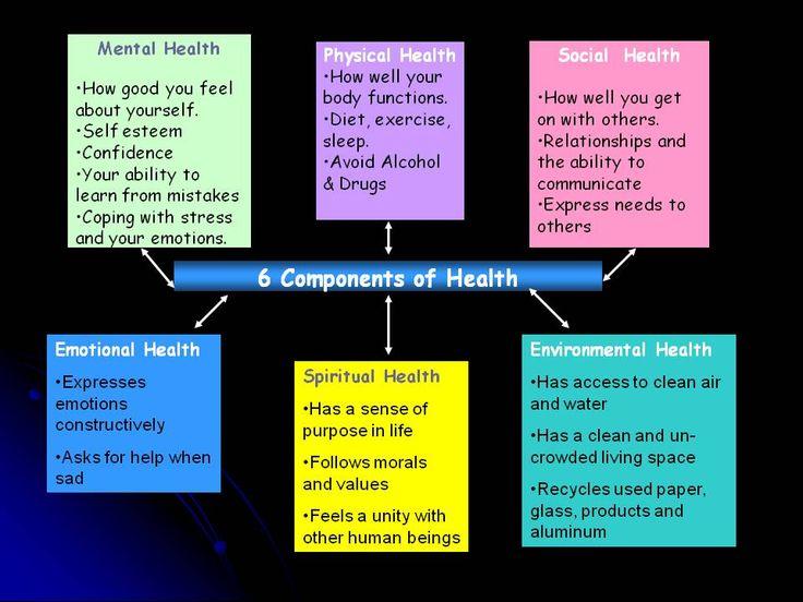 six components of health