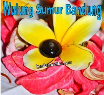 Batu Mustika Wulung Sumur Bandung