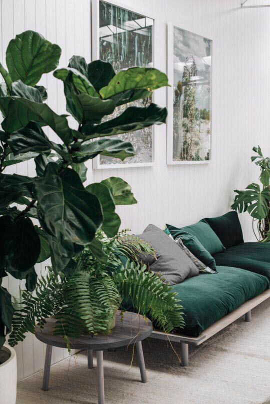 The leaves outside may be changing but inside, things should be going green, especially walls. This elegant shade will become extremely popular next season, and can be used as a base or accent.
