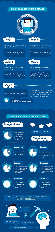 Optimize Your College Sleep Cycle
