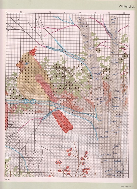 Cardinals and Hemlock tree chart2
