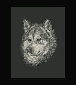 Malamute - This is the actual size of the scratch art. This size is intended as example of a memorial for an urn. Smaller work can easily be done for a pendant or jewellery.  A web site dedicated to this is planned. In the mean time I can be contacted at sue@suewalters.com #malamute