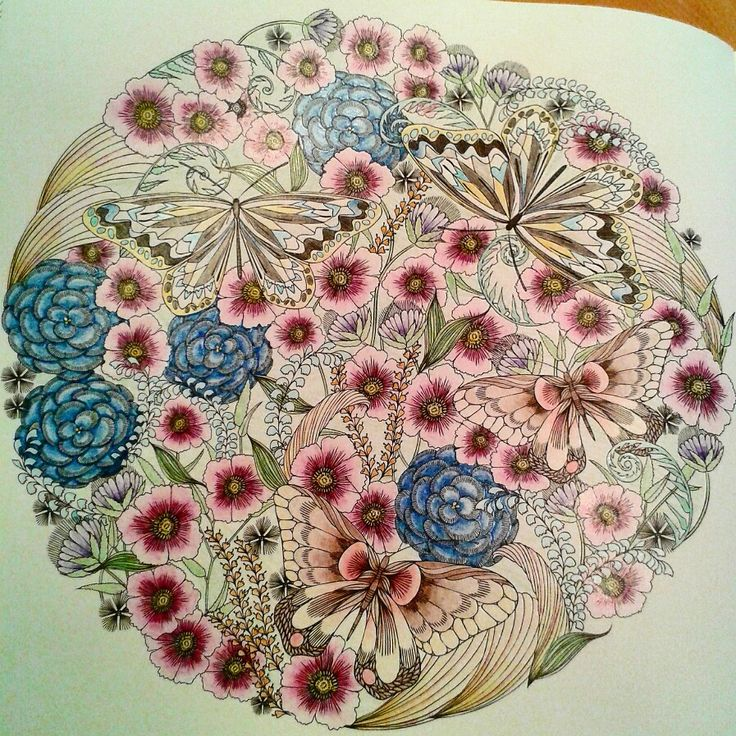 Flowers And Butterflies Colouring From Millie Marotta