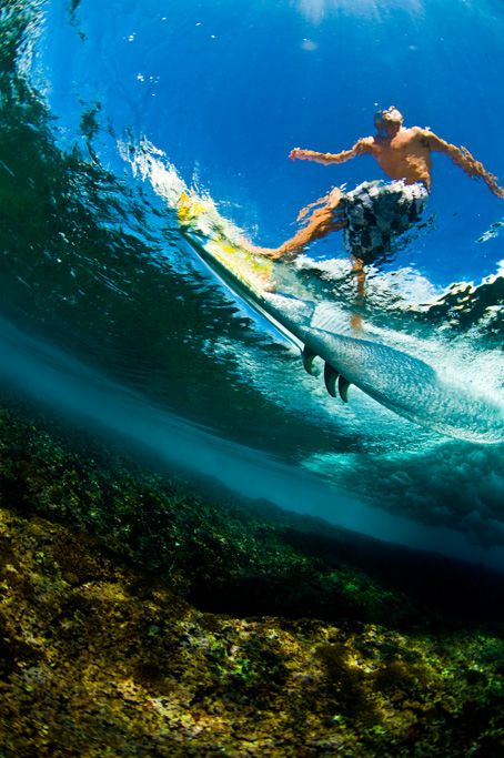 surfer through the looking glass