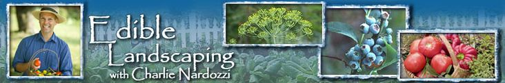 Edible Landscaping Primer. With Charles Nardozzi. Planning Your Landscape 101  Growing Berry Shrubs  Edible Trees  Growing Edible Flowers in Your Garden  Vegetable Garden Design  Edible Resource Guide  Soil Common Sense  Herb Gardening Basics 101  Pruning Fruit Trees  Using Organic Fertilizers