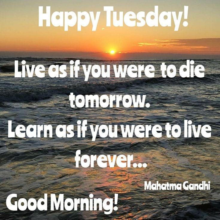 GOOD MORNING. HAPPY TUESDAY! #sunrises #sunrise #earlybird #earlymornings #earlyriser #goodmorning #sunrisequotes #happytuesday #gm #happy #tuesday #meme #morning #quote #good #goodmorningpost #post #images #good #thebeach #beachlife #motivation #encouragement #lifequotes #confidence #waves #naturephotography #nature #gandhi #live #life #livelife #beautyinfluencer