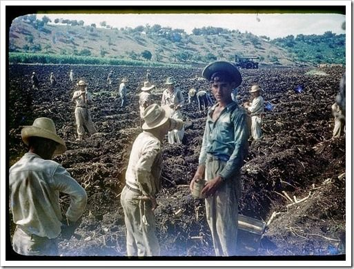 """Come & See how How I rediscovered the land of the """"JIBARO""""... our country    http://kasa-atelier.com/my-favorites/how-i-rediscovered-the-land-of-the-jibaro-our-country/"""