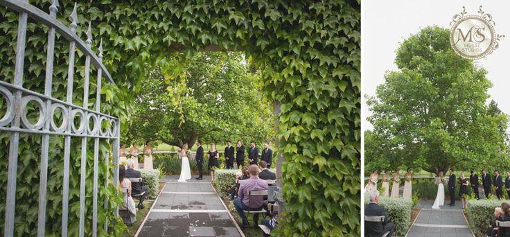 Ataahua, Tauranga, NZ. Musae Studios » Award Winning Destination Auckland Hamilton Tauranga Rotorua Wellington Wedding Photographers | Celebrant » Taylor & Sam