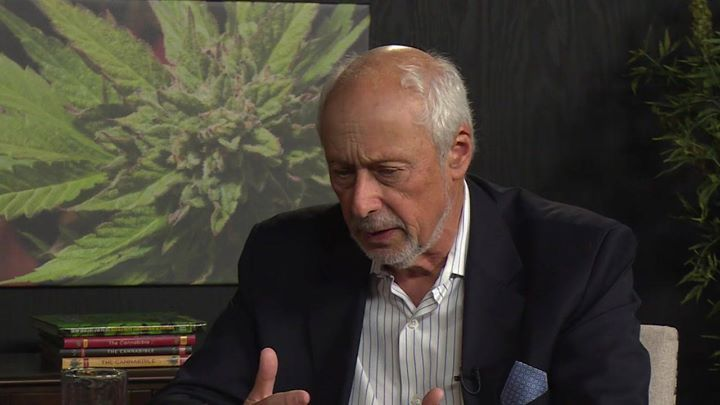 FAMOUS DRUG MANUFACTURER PLANS TO REPLACE OPIATES WITH CANNABIS! #news #alternativenews