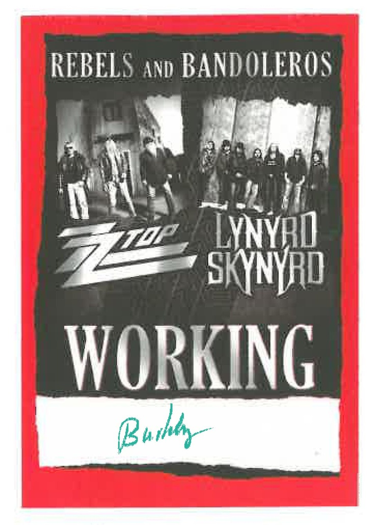 lynyrd skynyrd essays Throughout history , there have been many great southern bands the classic southern rebel band lynyrd skynyrd ,  powerful essays 867 words (25 pages.