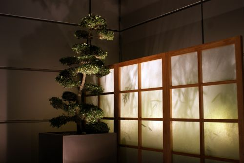 backlit screens/dividers - hinged shutters with frosted plexi and lights?