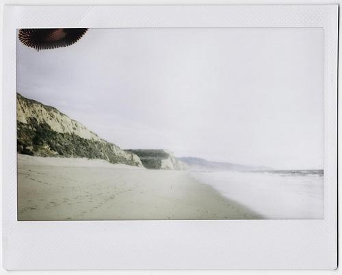 the sea: The Sea