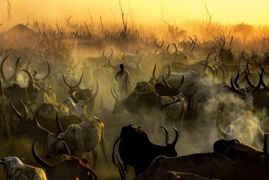 Dinka Cattle Camp at Sunset