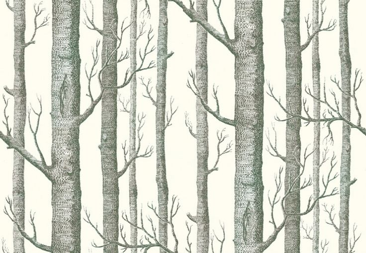 Woods (69/12147) - Cole & Son Wallpapers - Woods (Michael Clark 1959): A striking design sketched from trees and branches, making a unique repeat in an easy to use paste the wall wallcovering. Available in other colours. Please ask for sample for true colour match.