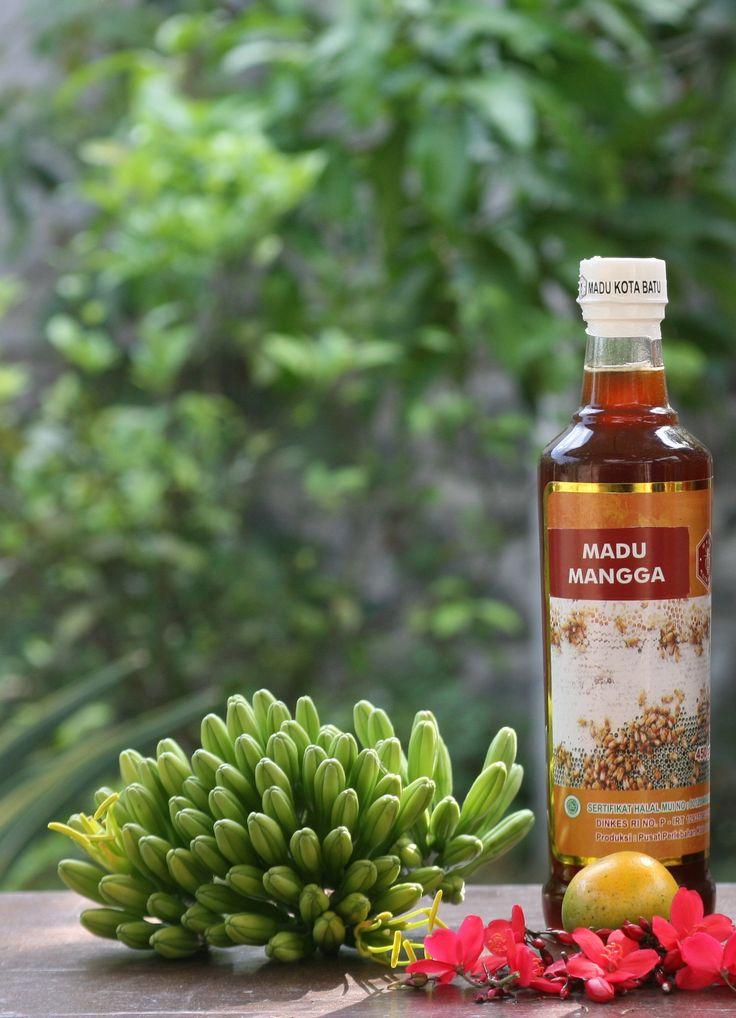 harga mangga madu , tempat mangga madu , bahan mangga madu , model mangga madu , pabrik mangga madu , produsen mangga madu , produksi mangga madu , produk mangga madu , the price of honey mango, the price of honey manga,