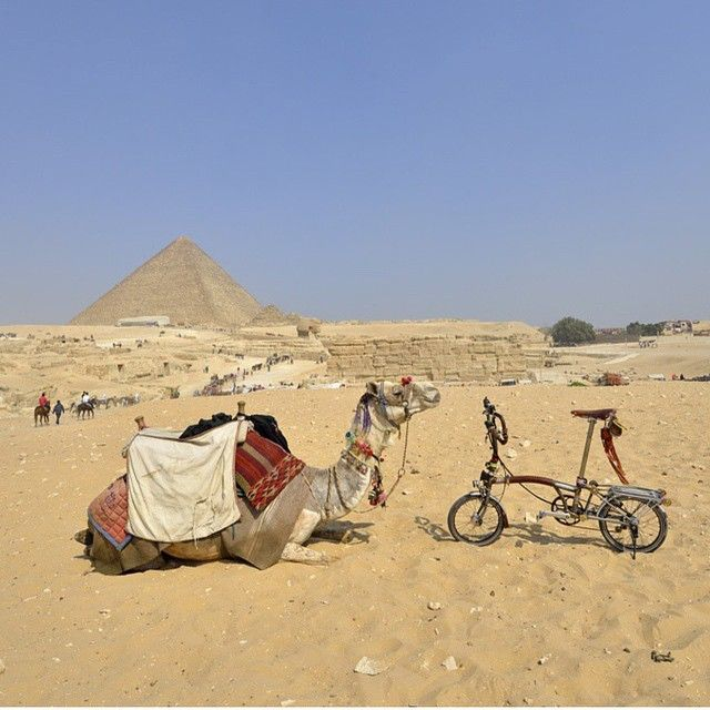 Exercise Bike Egypt: 100 Best Images About Brompton On Pinterest
