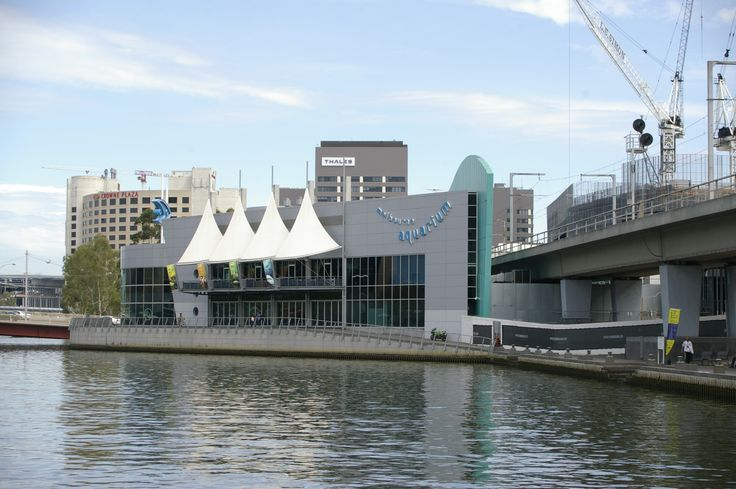 Sea Life Melbourne Aquarium is a Southern Ocean and Antarctic #aquarium in central Melbourne, #Australia. It is located on the banks of the #YarraRiver beside and under the Flinders Street Viaduct and the King Street Bridge. #fun #traveldiaries #ttot #melbourneaquarium