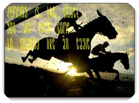 equestrian quotes   Horse Jumping Quotes And Sayings http://www.freewebs.com/breyer106 ...