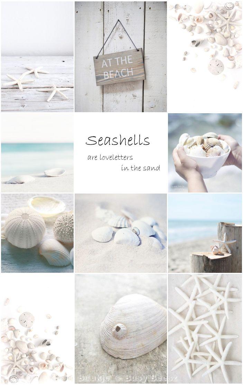 Moodboard Beach finds #seashells #beachfinds #beach #starfish