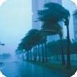 3M(TM) Safety & Security Window Films - Severe weather protection: minimize flying glass due to violent weather events.