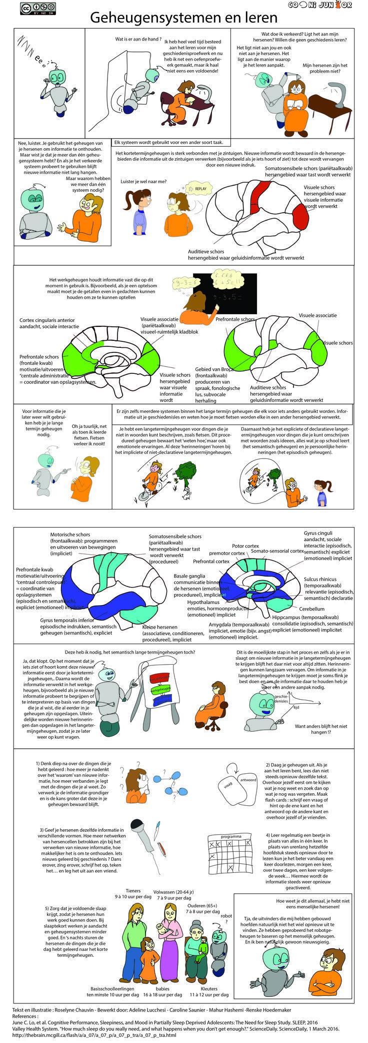 Vind je het moeilijk om nieuwe informatie te onthouden? Wetenschappers hebben tips, maar daarvoor moet je eerst meer weten over hoe je geheugen precies werkt! Tekst en illustratie : Roselyne Bewerkt door: Mahur-Renske References : June C. Lo, et al. Cognitive Performance, Sleepiness, and Mood in Partially Sleep Deprived Adolescents: The Need for Sleep Study.…