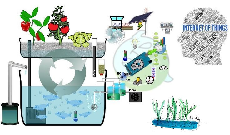 Internet of Things (IoT) in agriculture, a living reality