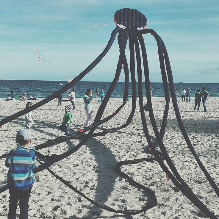 Octopus attack city.  #Gdynia #travel #Poland #travelpic