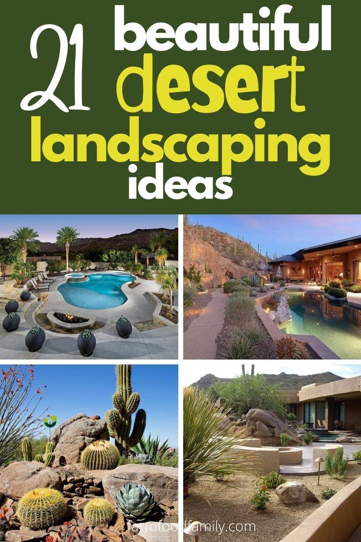 21 Cheap Desert Backyard Landscaping Ideas Drought Tolerant Gardens In 2020 Desert Backyard Desert Landscaping Backyard