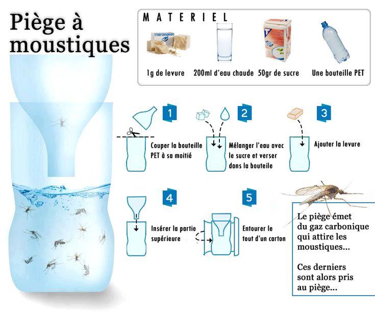 Piège à moustiques : 1g de levure + 200 ml d'eau chaude + 50g de sucre dans une bouteille en plastique