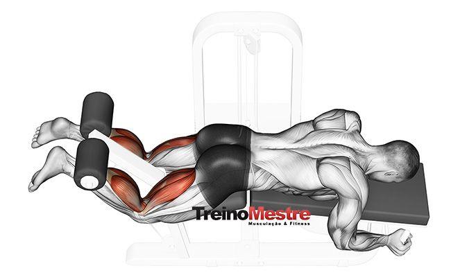 Um dos exercícios mais usados para o treino de posteriores, a mesa flexora (ou mesa romana) pode surtir bons efeitos se usada corretamente.  A complexidade que envolve um treino de musculação bem montado, transcende os aspectos de simples escolha de exercícios. Quando alguém me pede qual o melhor exercício para determinado objetivo, minha resposta …